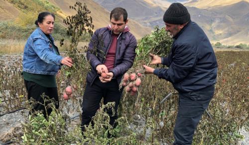 The USAID Potato Program in Georgia