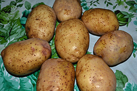 A second look at the lowly potato